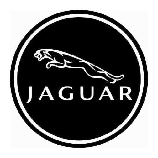 4MAT-dekielek-jaguar
